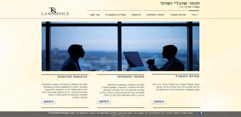 אתר לעורכי דין – אתר לסוכני ביטוח, Fly Guy