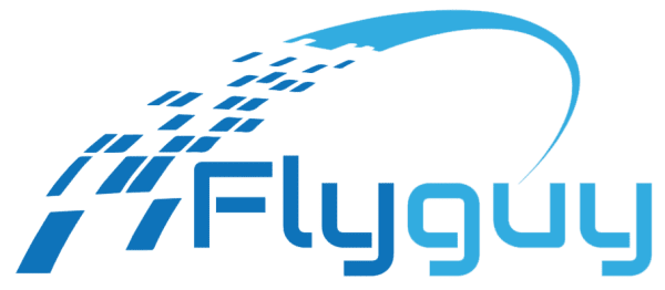 Logo Fly Guy