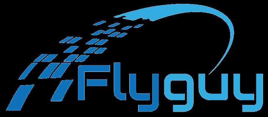 עודד רהב, Fly Guy