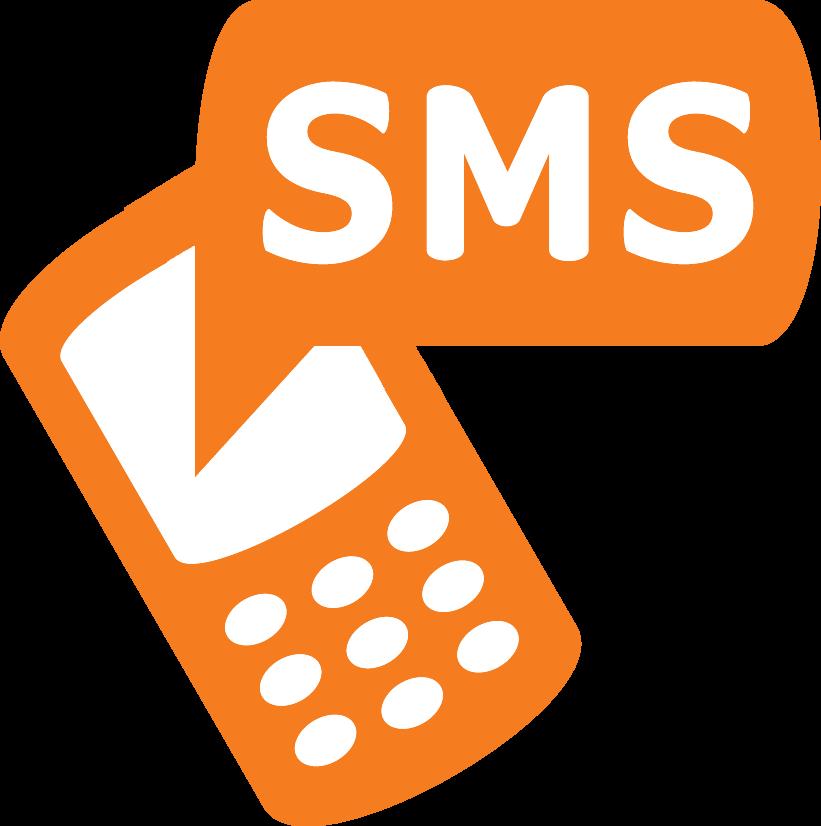 מערכת SMS, Fly Guy
